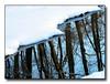 Winter Streamltbrgtsnow2 (35257303)