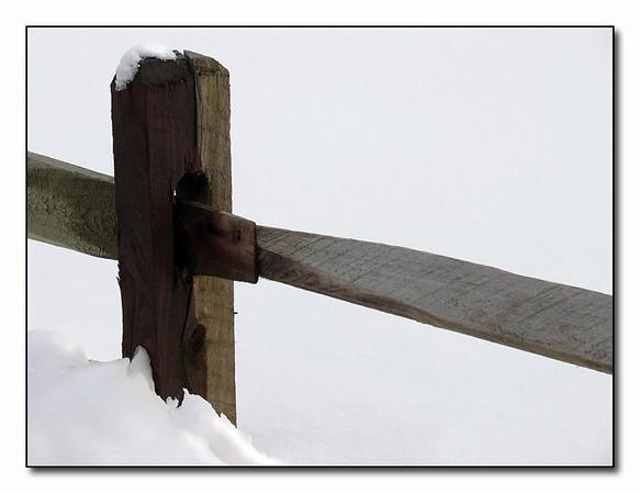 The FenceltbrgtIMG_0522w (40336296)