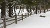 winter-122sm