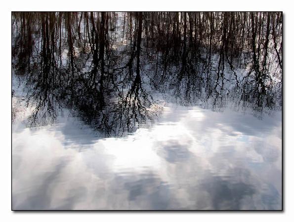 Winter ReflectionsltbrgtIMG_0510w (40336304)