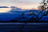Winter Sunrise behind Mount Rainier