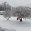 Winter scenes of Lilburn