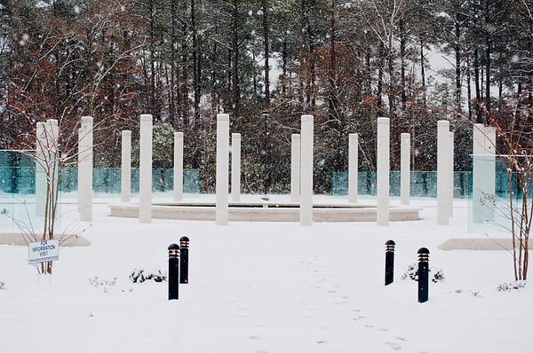 Vietnam Memorial8