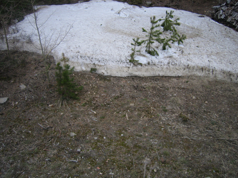 April 22, 2007<br /> Another view of the snow line melting back.