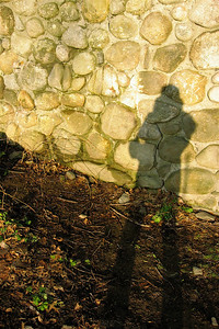 shadow upon the castle wall