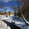 Winter Day Dreams