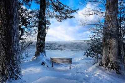 A Frozen View (4)