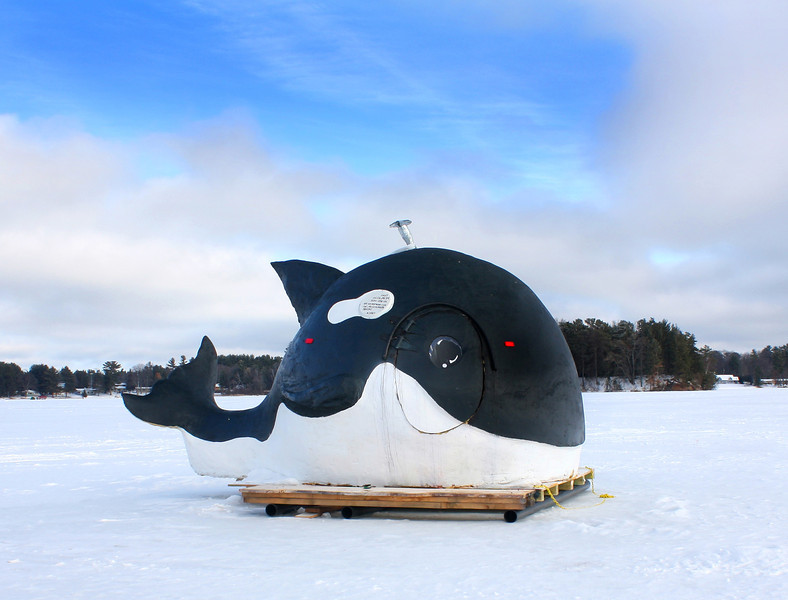 """  Orca the Whale Ice Shanty  "" 2"