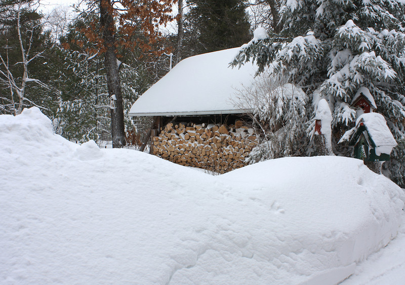 """""""  Leap Day Snowstorm 2012, 20 Plus Inches of Snow  """""""