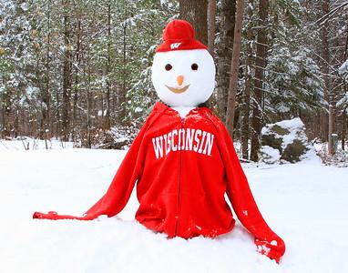 Wisconsin Snowman