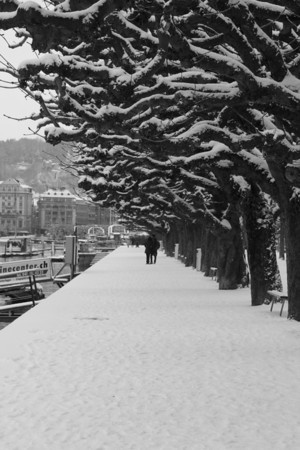 Switzerland, Lucerne, Snow Covered Path SNM