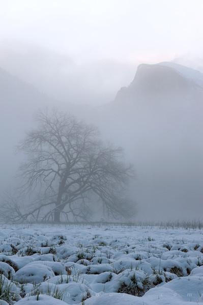 Half Dome on a foggy morning