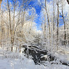 A Northwoods Frozen Wonderland 10