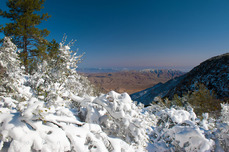 Snow desert overlook