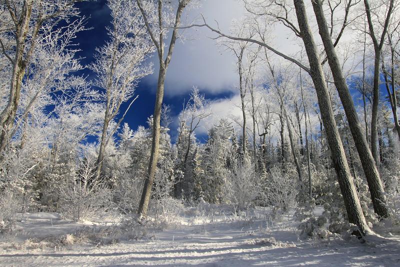 A Northwoods Frozen Wonderland