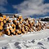 Logs  Logs Logs
