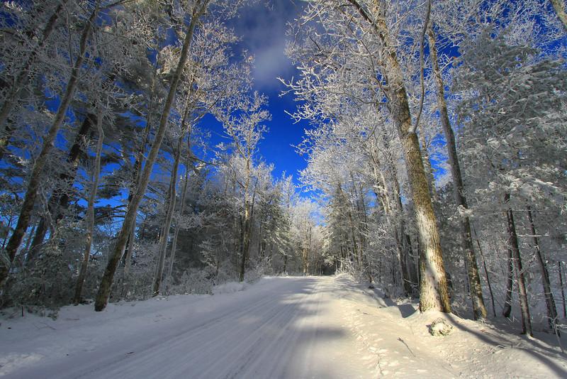 A Northwoods Frozen Wonderland 6