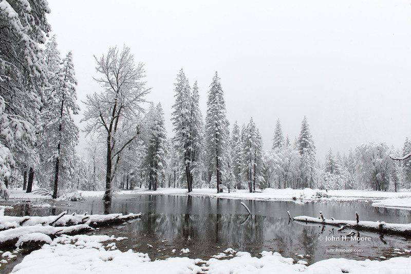 Yosemite National Park during a snowstorm
