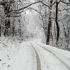 Snow Covered Road<br /> <br /> I'm actually back tracking here and liked how my tire tracks help to highlight the gentle curve of this country road through the otherwise very white snow.