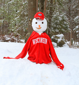 Wisconsin Snowman 2