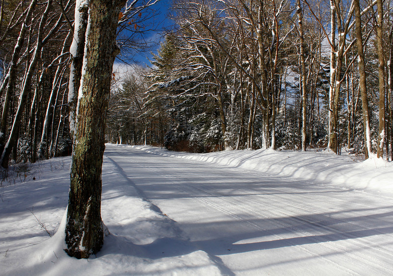 """Winter Shadows on a Northwoods Country Road"""