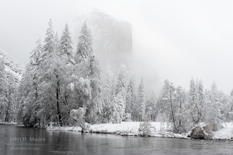 El Capitan peeks out through falling snow.  Yosemite National Park.