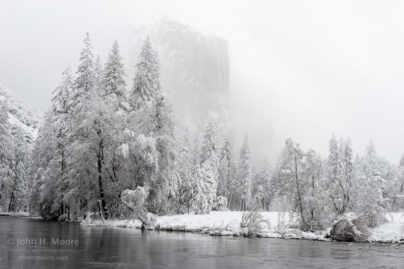El Capitan peeks out through falling snow.  Yosemite National Park.