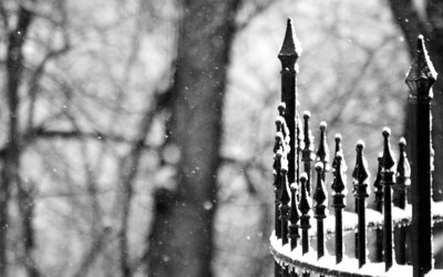 cliched snowy fence