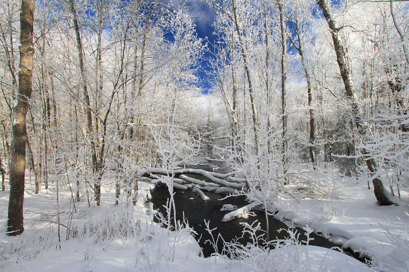 A Northwoods Frozen Wonderland 2