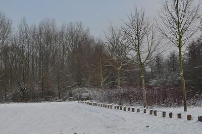 Wintertime 2010 Weerde