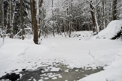 Laajanoja valley winterscene