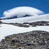 Day 7 Lenticular Cloud over Mt Rainier-Spray Park 7-19-14_7634