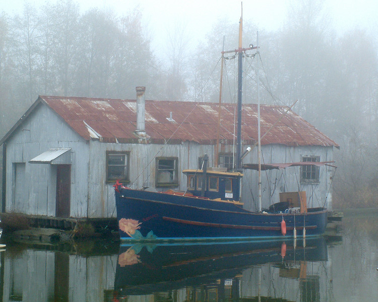 A retired coastal troller tied up along side a Ladner net shed.
