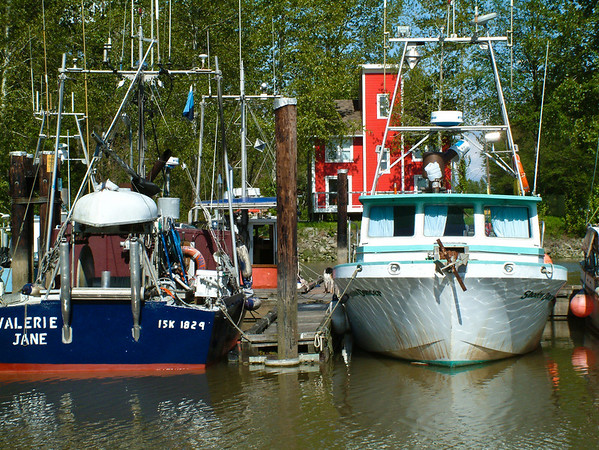 A pair of idle gillnetters in Ladner