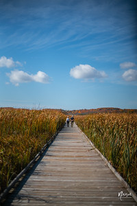 a couple walks down a boardwalk