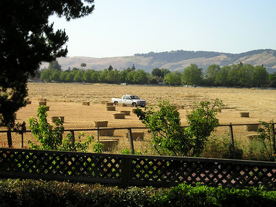 Don't you wish you had an 800-acre field in which to park your truck? Someday this will be a different kind of parkland.