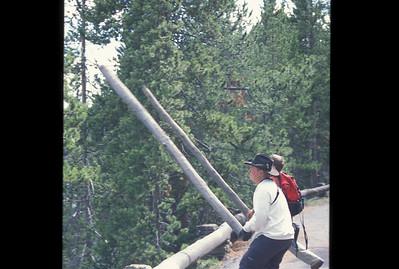 Yellowstone2003_43