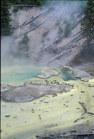 Yellowstone2003_33