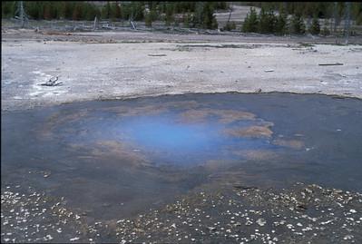 Yellowstone2003_11