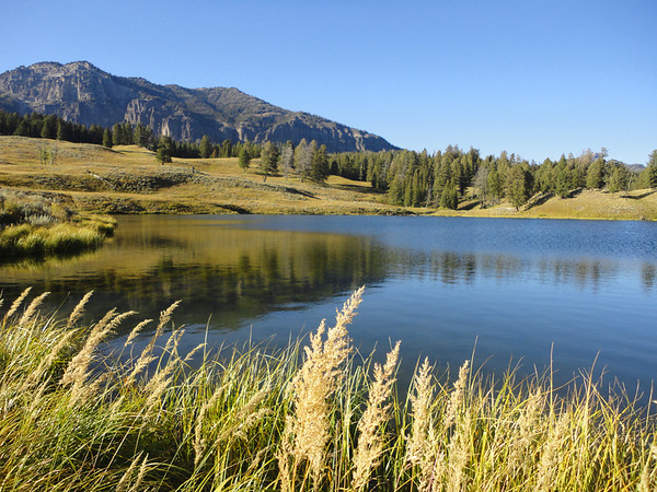 Incredibly beautiful Trout Lake - Fished and caught some grass