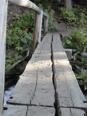 Footbridge to Trout Lake