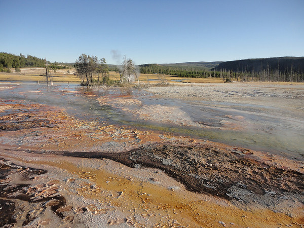 Hot spring runoff in Biscuit Basin