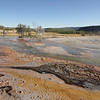Hot spring runoff in Biscuit Basin