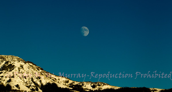 Moon rise of Mt. Norris 112215