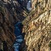 Yellowstone River Upperfalls 9-17-19_V9A7402