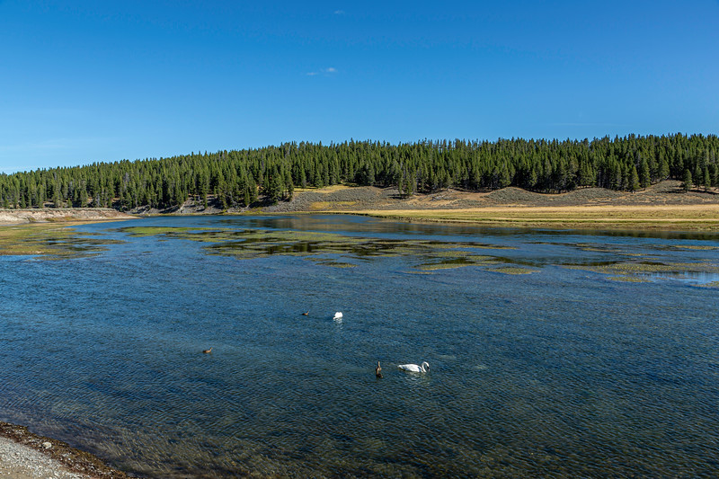 Yellowstone River Valley 9-17-19_V9A7384