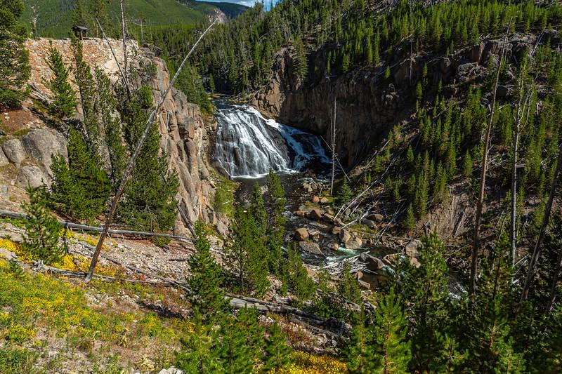 Yellowstone Lower Falls 9-18-19_V9A7526