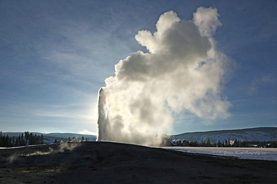 Old Faithful in early stage eruption with the late afternoon sun shining thru the cloud of steam.