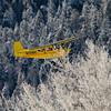 Spotter Plane in Lamar Valley