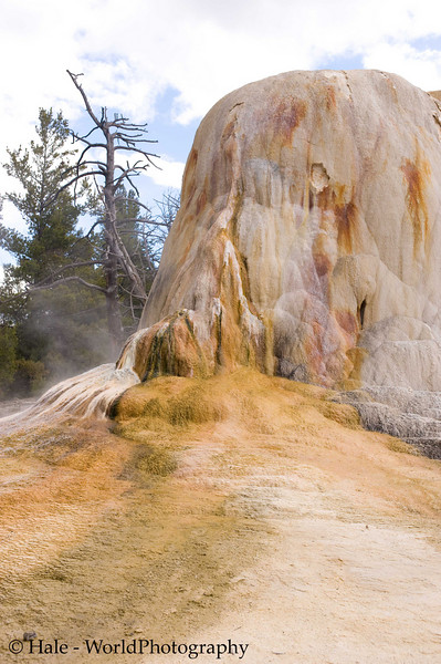 Thermal Feature At Upper Terrace of Mammoth Hot Springs, Yellowstone National Park
